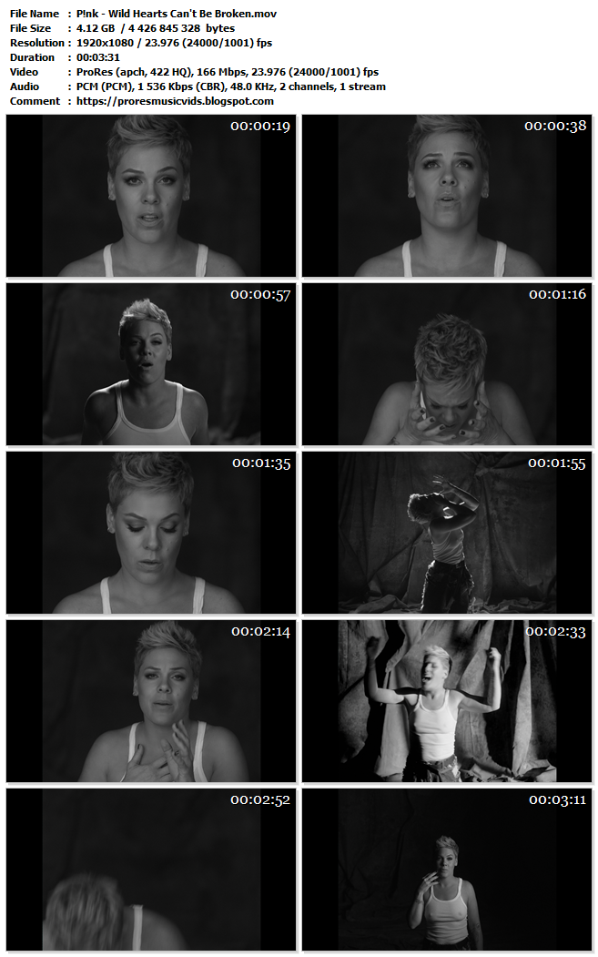 P!nk – Wild Hearts Can't Be Broken