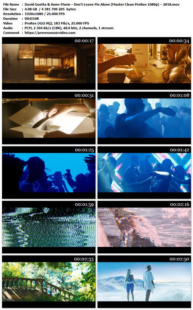 David Guetta & Anne-Marie – Don't Leave Me Alone